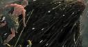 《唐寅在異界》漫動畫,每天更新,騰訊動漫搶先看!