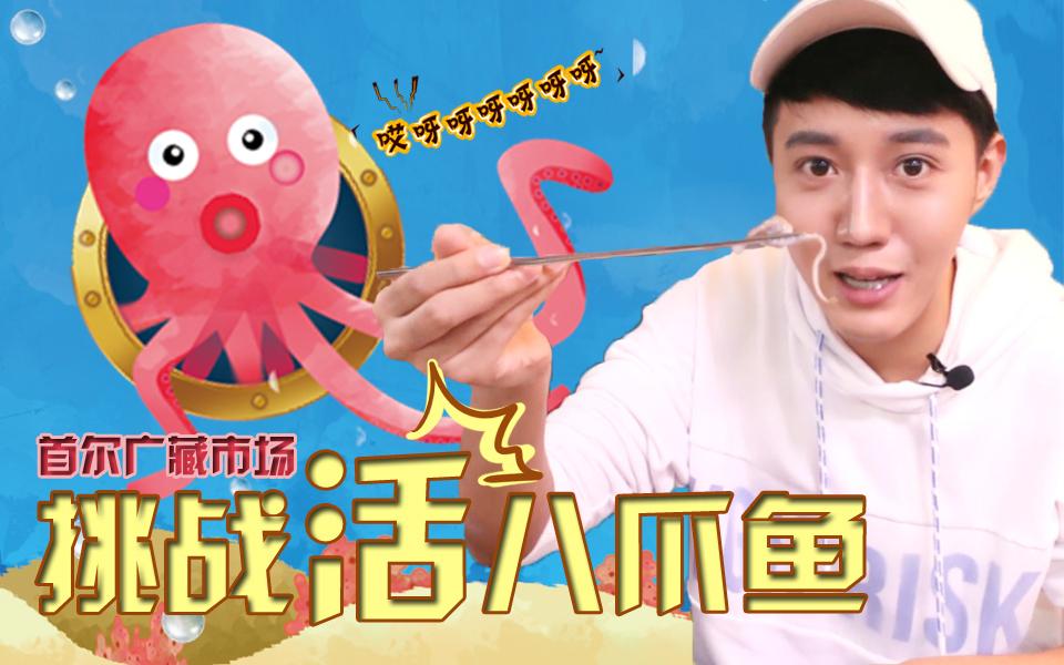 跑男最爱的韩国广藏市场挑战活八爪鱼