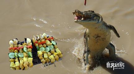 世界厨房第103集:膨胀了!光哥澳洲钓鳄鱼,还把鳄鱼肉做成了烤肉串