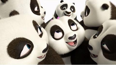 萌萌哒小熊猫们