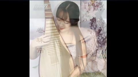 卷珠帘d调琵琶曲谱