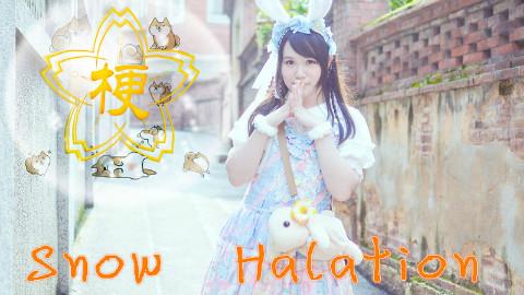 snow halation谱子