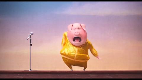 美国动画---动物好声音,最新预告片