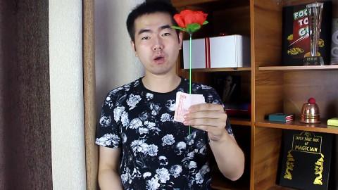 泡妞把妹魔术教学,玫瑰花穿百元大钞,情人节七夕即兴魔术