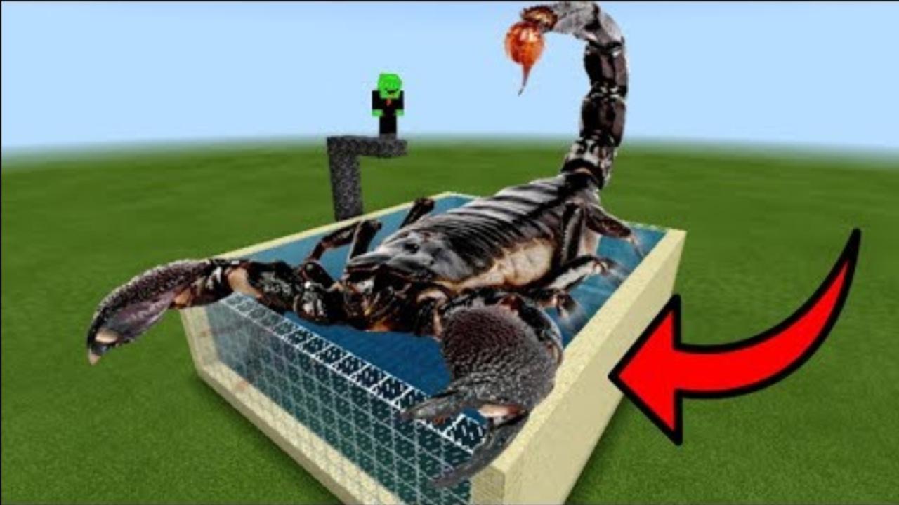 我的世界:在水池里养了一大群蝎子 这怕不是要被蜇Part1