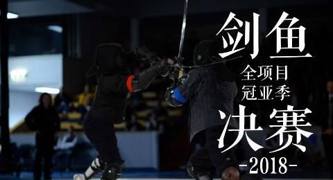 【武术赛事】2018瑞典HEMA剑鱼全项目冠亚季军现场录播合集