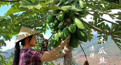 一道用水果做的云南菜,凉拌木瓜丝,你吃过吗?
