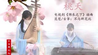 【寻国风】琵琶古筝合奏《桃夭》, 陆大人和今夏的定情曲来咯!