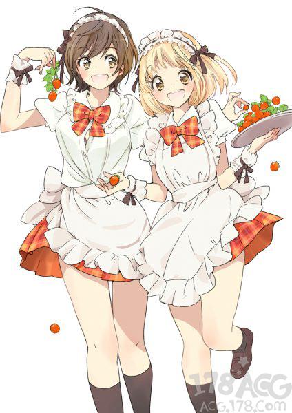 百合漫画「围裙与加濑同学」推出特装版,收录短片动画BD