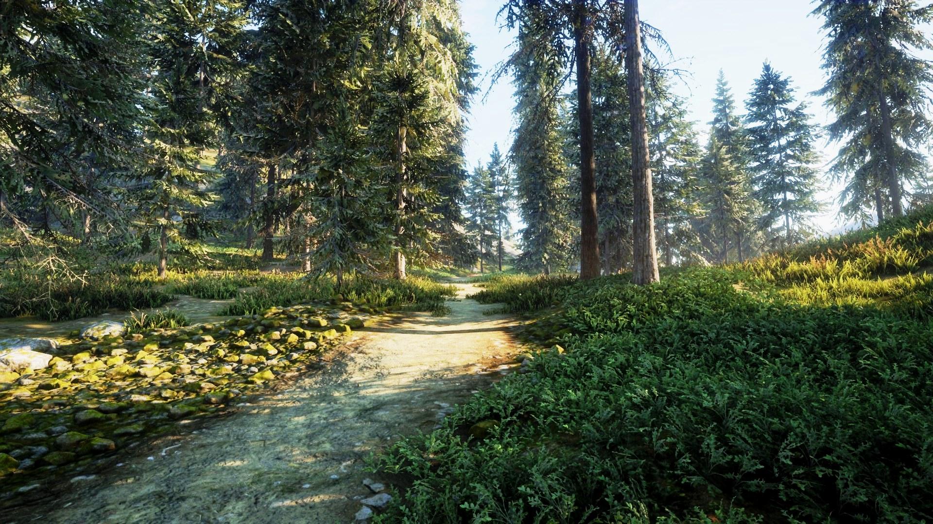 43 只属于狩猎者的风景,《猎人:野性的呼唤》高清壁纸赏