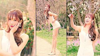 【Natsu夏日】what is love 【爱就是在樱花树下和我接吻吧】