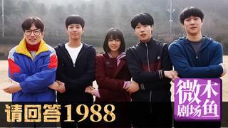 【木鱼微剧场】最好的韩剧《请回答1988》:德善的初恋(2-3)