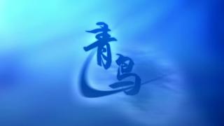 【二人合唱】青鸟|中文填词