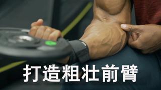 怎么锻炼前臂 打造美感外形?