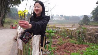 漆二娃vlog:解封进村了,打扫卫生之余摄像小姐姐竟然揭秘二娃身高!