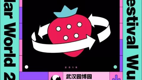 2019草莓音乐节of武汉Part1