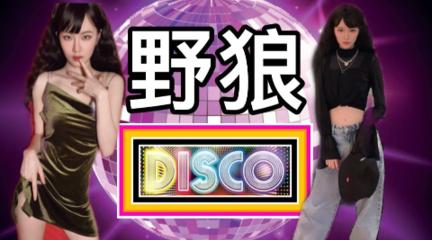 【菇力帕】野狼disco
