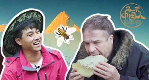 【当一天中国人】意大利厨师前往香格里拉深山寻找顶级蜂蜜