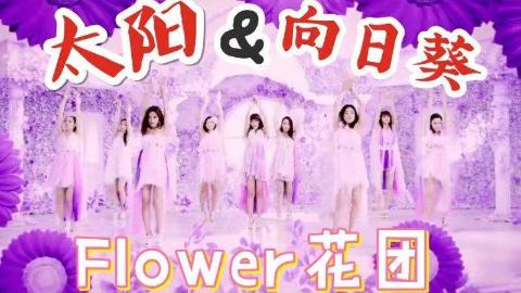 Flower 太阳与向日葵 MV 中日字幕 | 神迹字幕组Part1
