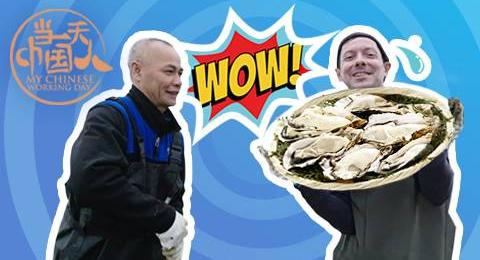 【当一天中国人】看到那么多生蚝,法国阿辉两眼放光直呼想要吃个饱
