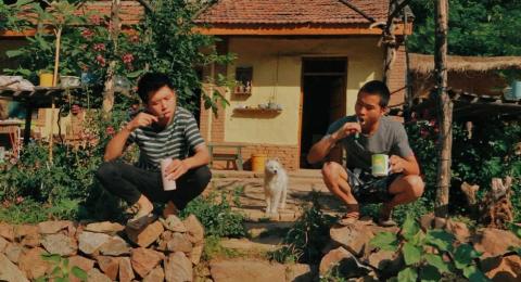 【野居青年】野居vlog,在山中真实的一天是什么样子的