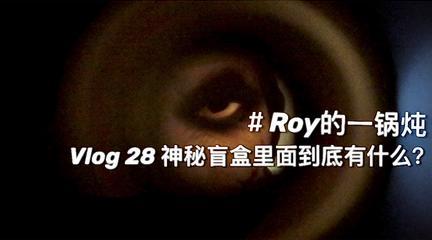 Roy的一鍋燉 | 神秘盲盒里面到底有什么?Vlog 28