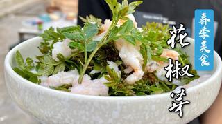 """春季饭馆里最常见的菜""""花椒芽"""",凉拌、煎饼、干炸,怎么做都好吃"""