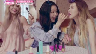 Red Velvet 历代演唱会 VCR Highlight