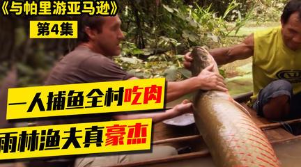 帕里游亚马逊04|村民捕获40斤大鱼,码头就地分享。这风俗超赞!