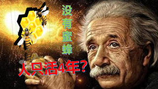 没有蜜蜂 人类只能生存4年?