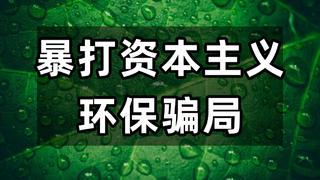 中国环保不需资本主义来教育