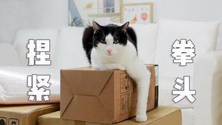 猫:我怎么养得起铲屎官啊?