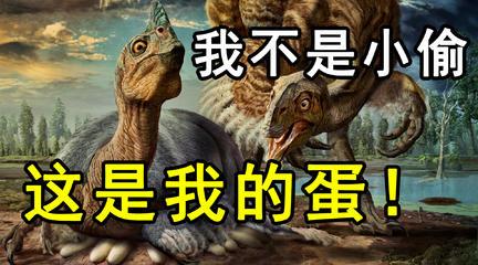 偷蛋龙:我才不是小偷,这是我的蛋!背负盗名的恐龙却是位伟大的母亲?【夏日蕉易战】