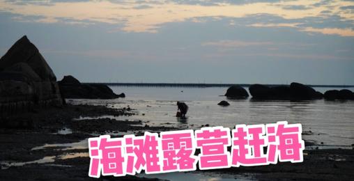 沙滩露营赶海,渔民满载而归,清晨退潮后发现超多小螃蟹