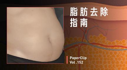 Vol.152 脂肪去除指南