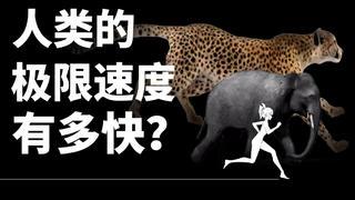 【基德】人类的极限速度有多快?