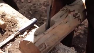 2人用了10天在深林里建造了一座木屋庇护所