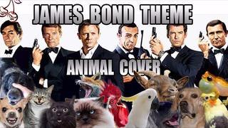 【毫无违和感】☆ James Bond Main Theme☆错误的打开方式