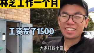 西藏打工一个月管吃住,简单帮拍了10条视频,临走老板还给发工资
